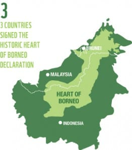 GlobCom 2015: Competing ideas to preserve the Borneo rainforest