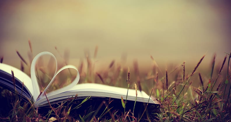 Book lying in grass. Two centre pages of the book are folded inwards to make a love heart.