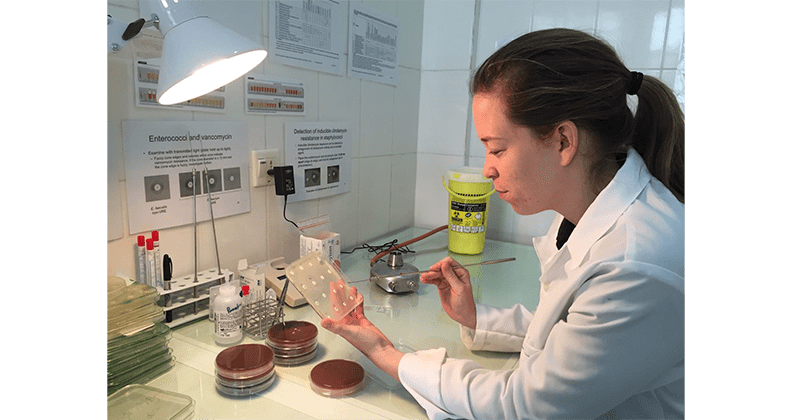 Jessica Ramsay working in a bacteriology laboratory.