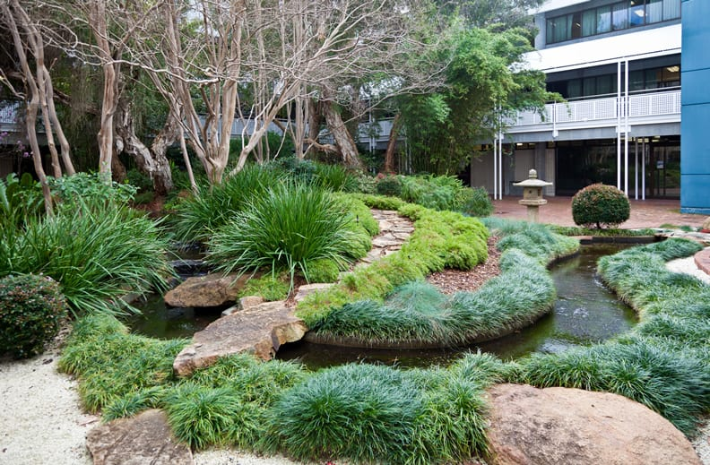 Japanese garden at Bentley campus