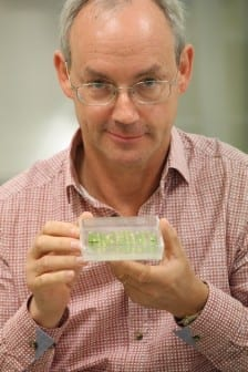 Professor Richard Oliver (credit: GRDC)